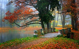 Preview wallpaper Park scenery, river, water, forest, trees, leaves, colorful, autumn