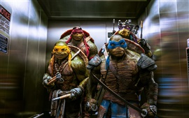 Teenage Mutant Ninja Turtles 2014 película