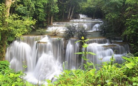 Tailândia, floresta, selva, rio, cachoeiras, riacho, árvores