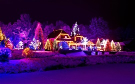 Preview wallpaper Winter, night, lights, new year, house, lake