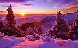 Preview wallpaper Winter, sky, sunset, mountains, forest, trees, spruce, snow