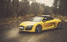 Preview wallpaper Audi R8 V10 Spyder yellow car