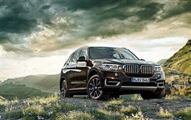 Preview wallpaper BMW X5 brown SUV car