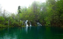 Туман, озеро, водопады, лес, деревья, рассвет