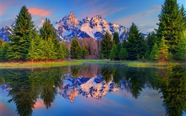 Grand Teton National Park, Wyoming, USA, trees, mountains, lake