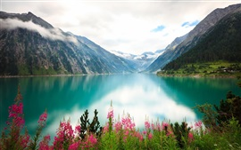 Lake, flowers, mountains, clouds