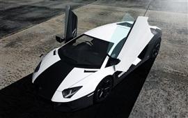 Preview wallpaper Lamborghini Aventador black white supercar top view