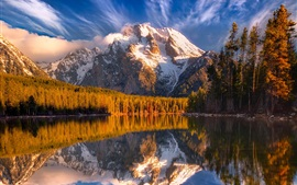 Mountains, snow, forest, trees, lake, water reflection