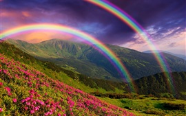 Preview wallpaper Nature landscape, mountains, flowers, rainbow