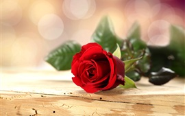 Preview wallpaper Red rose flower, wooden table, bokeh