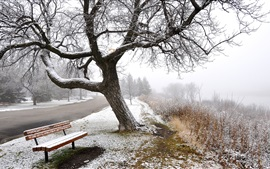 Preview wallpaper Winter, snow, fog, road, trees, bench