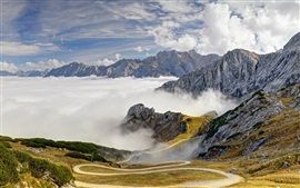 Alps, mountains, road, trees, sky, clouds, fog, Bavaria, Germany Wallpapers Pictures Photos Images