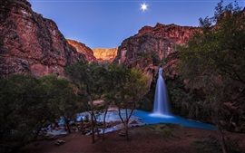 Arizona, le Grand Canyon, Havasu Falls, arbres, rivière