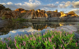 Preview wallpaper Arizona, Prescott, Watson lake, USA, lake, flowers, stones