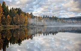 Preview wallpaper Autumn, lake, forest, trees, morning, mist
