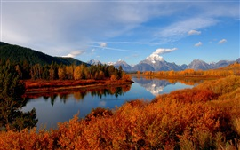 Preview wallpaper Autumn, trees, mountain, forest, river, sky