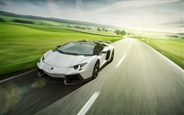 Preview wallpaper Lamborghini Aventador LP700-4 white roadster speed