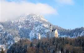 Neuschwanstein, Germany, Bavaria, castle, winter, trees