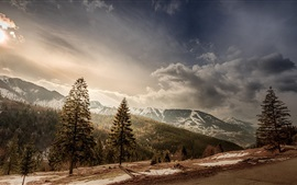 Preview wallpaper Romania, trees, mountains, snow, sun, clouds, road