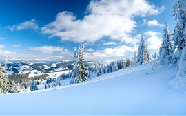 Preview wallpaper Winter, snow, trees, mountains, sky, clouds