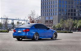Preview wallpaper BMW M5 F10 blue car back view