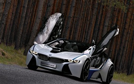 Preview wallpaper BMW concept car, beautiful, wings