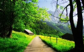 Preview wallpaper Beautiful spring, mountain, house, trees, road, green