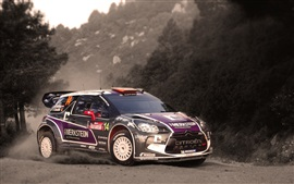 Preview wallpaper Citroen DS3 Rally, Car, Sports