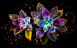 Preview wallpaper Colorful flowers, abstract, water drop