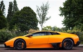 Preview wallpaper Lamborghini Murcielago LP670-4 orange supercar, trees
