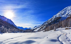 Mountains, winter, snow, blue sky, trees, sun