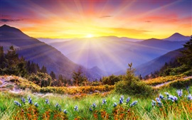 Preview wallpaper Nature landscape, mountains, trees, grass, flowers, sunrise