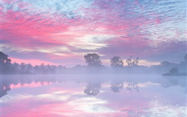 Preview wallpaper Netherlands, autumn, lake, morning, fog