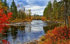 Preview wallpaper River, trees, autumn, nature scenery