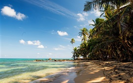 Preview wallpaper Tropical, beach, sand, palm trees, rocks, sea