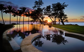 Preview wallpaper USA, Hawaii, Maui, sunset, pool, trees, silhouettes