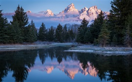 USA, Wyoming, Grand Teton National Park, lake, trees, morning