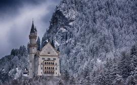 Castelo, floresta, inverno, neve, Alemanha