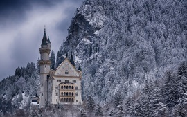 Замок, лес, зима, снег, Германия