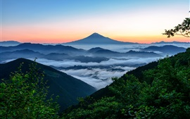 Preview wallpaper Fujiyama, Japan, mountain, fog, clouds, trees, morning