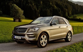 Carro Mercedes-Benz ML 500 SUV