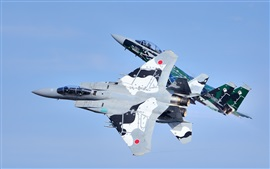 Preview wallpaper Mitsubishi F-15DJ fighters, flight, sky