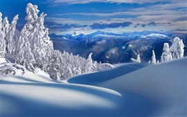 Preview wallpaper Mountains, trees, snow, winter, nature scenery