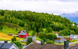 Norway, town, mountains, houses, trees, grass