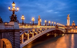 Preview wallpaper Paris, France, city, evening, lights, Pont Alexandre III, bridge