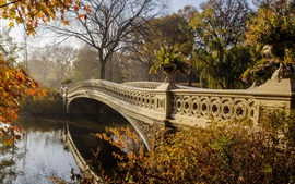 Preview wallpaper Park, bridge, trees, autumn