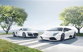 Preview wallpaper Audi R8, Lamborghini LP640-4, white supercars