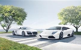 Audi R8, Lamborghini LP640-4, superdeportivos blancas