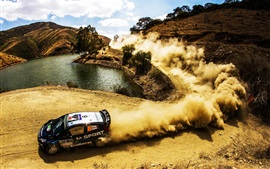 Ford Fiesta WRC Rally, carro, poeira