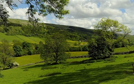 Kettlewell, Inglaterra, pasto, árboles, campos